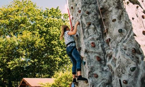 Giant Climbing Wall